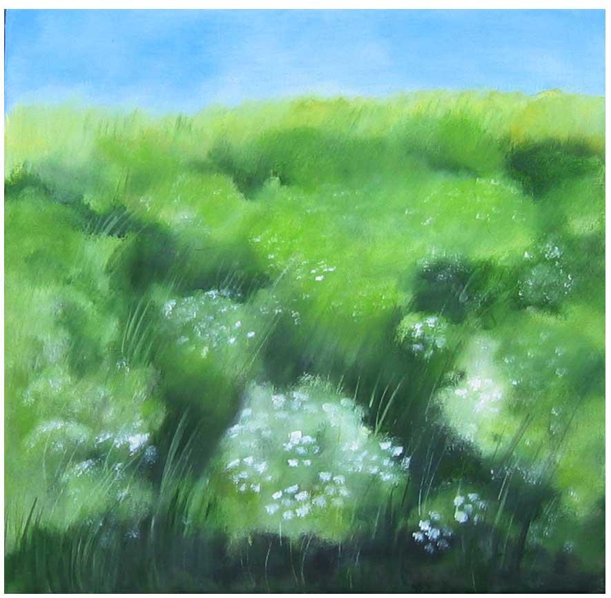 Skærmblomster