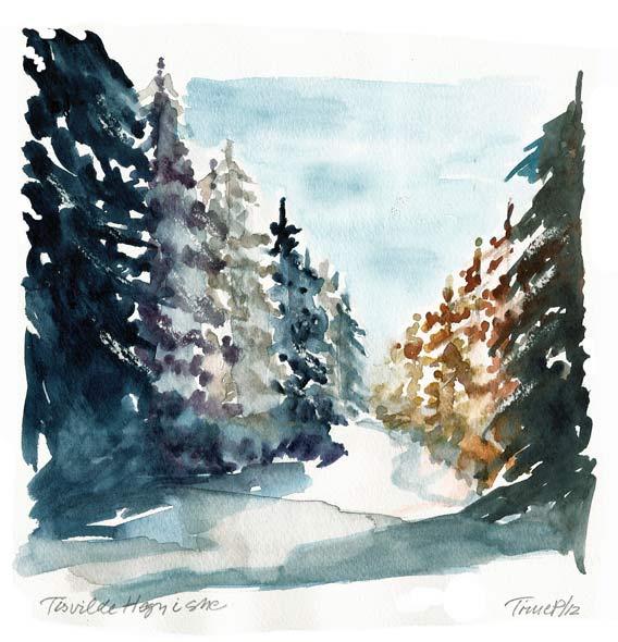 Tisvilde Hegn i sne